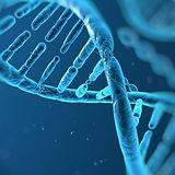 DNA 3.jpg