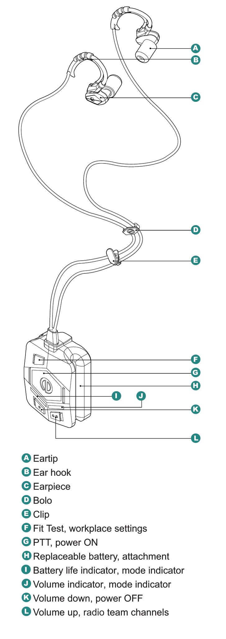 SonX wireframe details