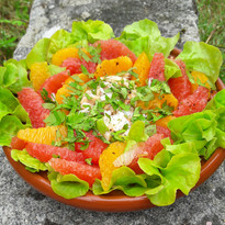 Salade d'araignée de mer aux agrumes