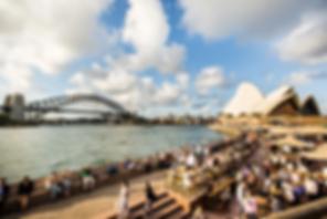 NSW 491 Visa.webp
