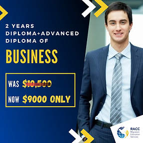 diploma of business.webp