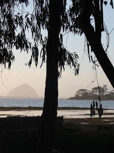 Morro Bay from Baywood Park