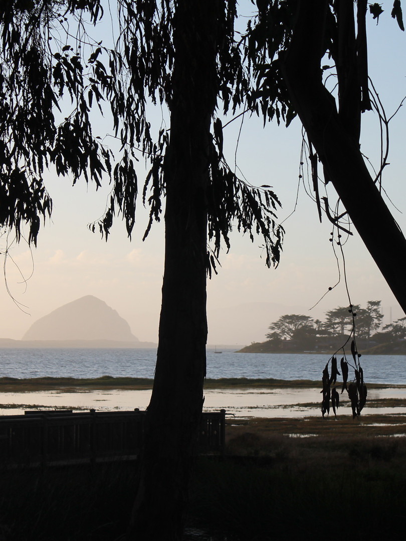 Morro Bay from Baywood Park