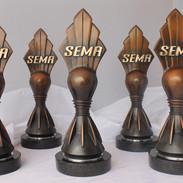 sema5-1.jpg