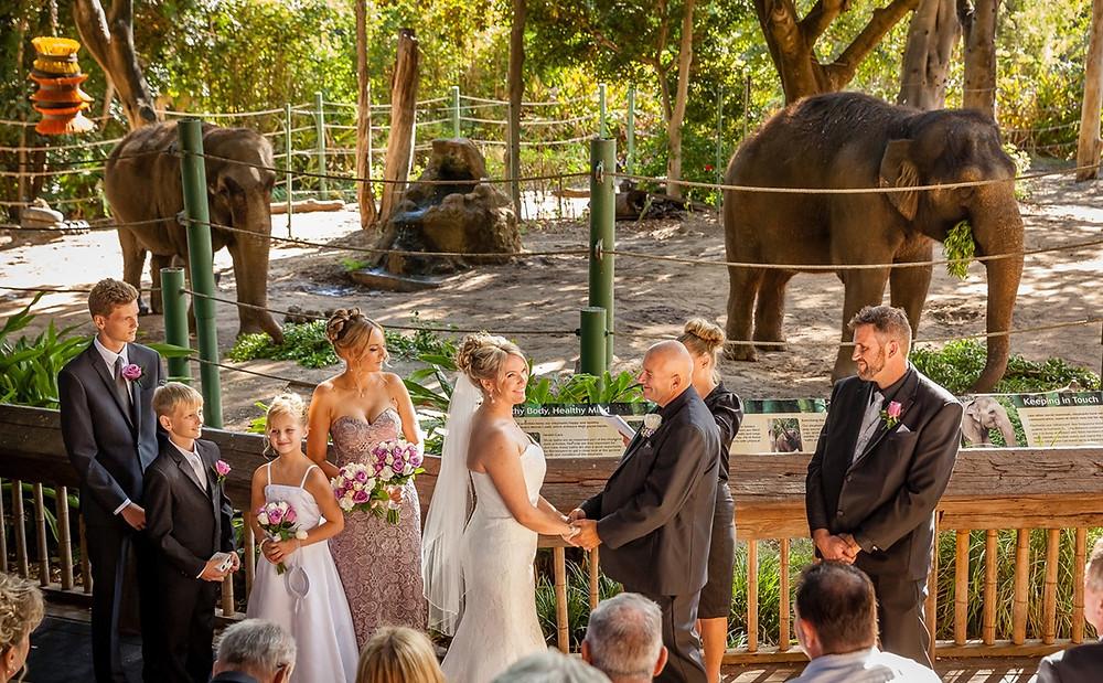 Amis des animaux et de la nature, vous ne pourrez que surprendre et ravir vos invités