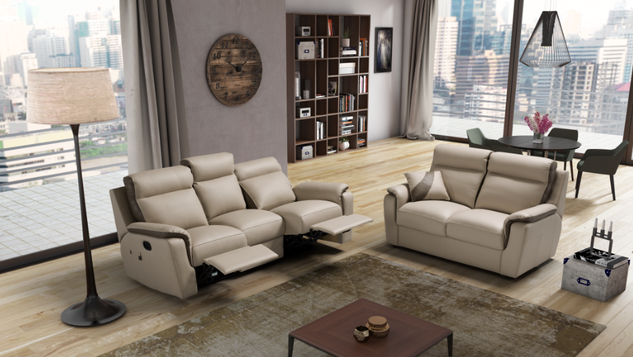 Leather Reclining Suites