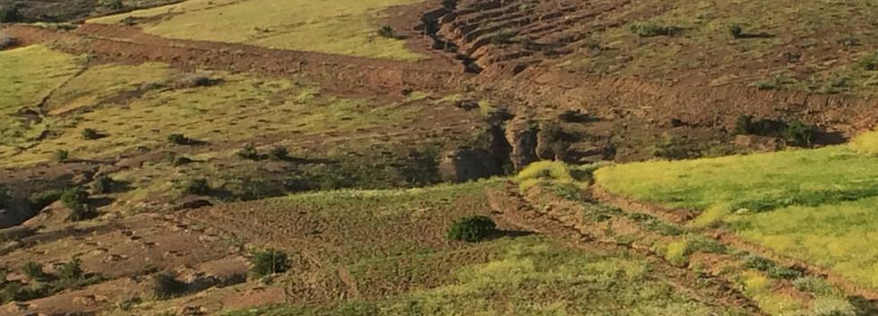 Morocco earthworks