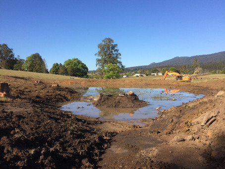 Retrofitting farm dams and vastly increase wildlife habitat and productive edge function