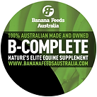 B-Complete emblem.png