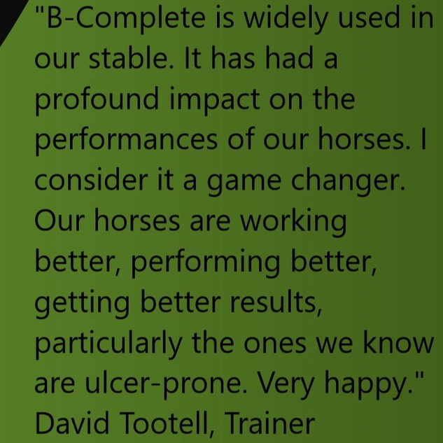 BFA-David Tootell Quote No Images.jpg