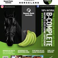 HORSELAND Advert.JPG