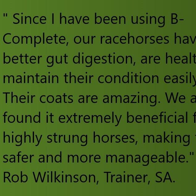 BFA-Rob Wilkinson Quote No Images.jpg