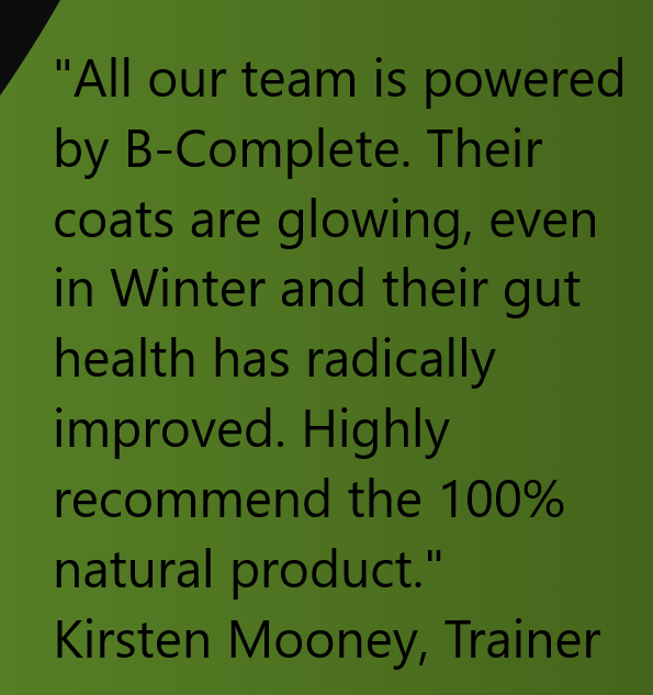BFA-Kirsten Mooney Quote No Images.png