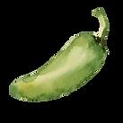 Chili vert