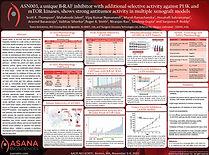 Asana ASN003 Poster Thumbnail Nov 2015