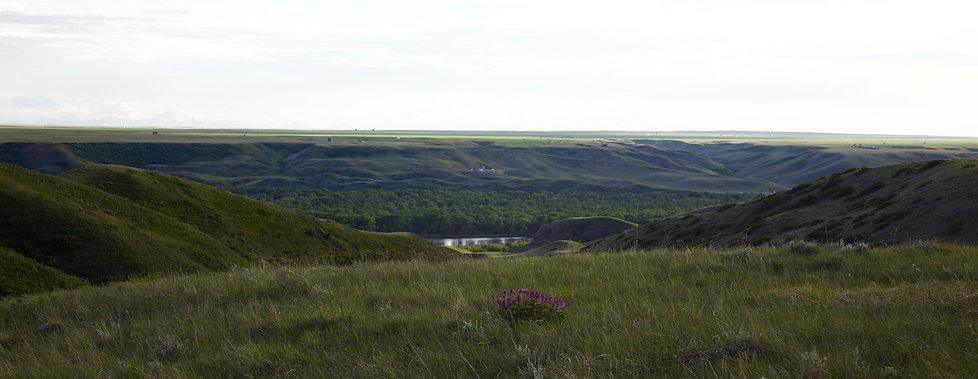 Lethbridge land with views