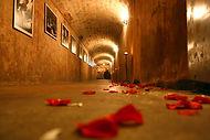 cellar-1228659.jpg