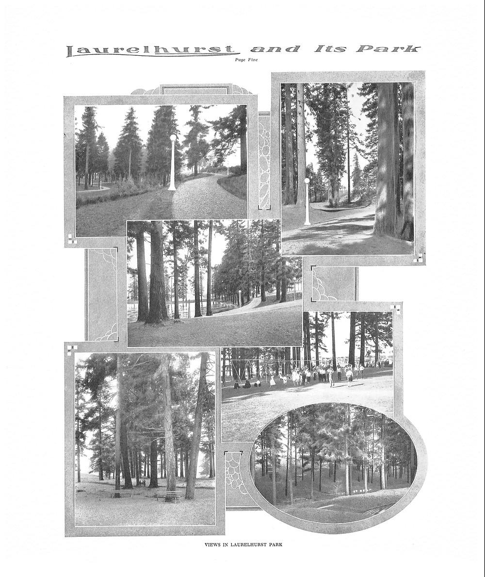 Page 5 - Laurelhurst Sales Brochure