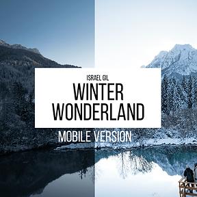 Winter Wonderland Lightroom Presets (Mobile)