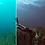 Thumbnail: Underwater Lightroom Presets (Mobile)