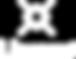 Lieuwe-logo-black.png