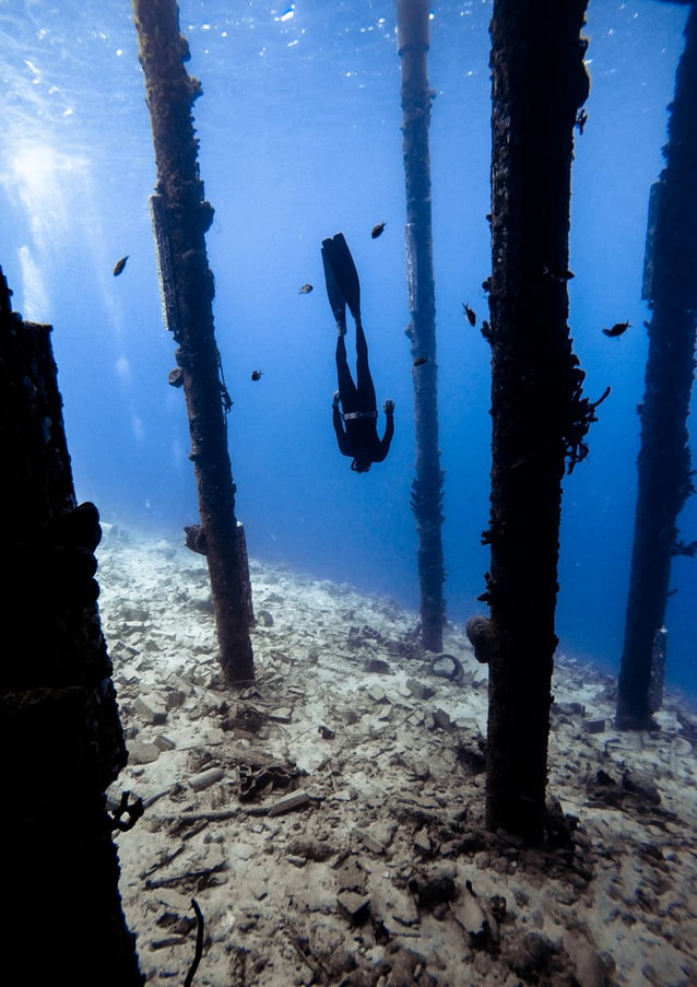 Deepsea Bonaire - Snorkeling Dive