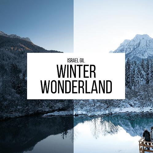 Winter Wonderland Lightroom Presets (Desktop)