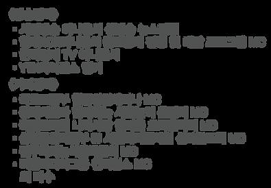 추가된분량_황보혜경 경력.png