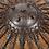 Thumbnail: Ottoman Buckler-Kalkan shield