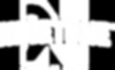 Ninetone logo recreate no BG.png