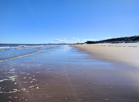 The 9 mile walk of Druridge bay, Northumberland