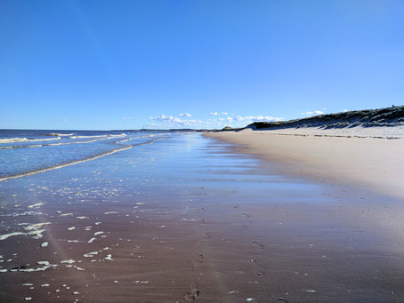 The 9 mile walk of Druridge bay, Northumberland