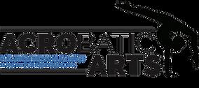Precision Dance Project   Certification  Acrobatic Arts