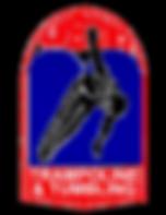 USTA Trampoline & Tumbling Certifiction | Precision Dance Project