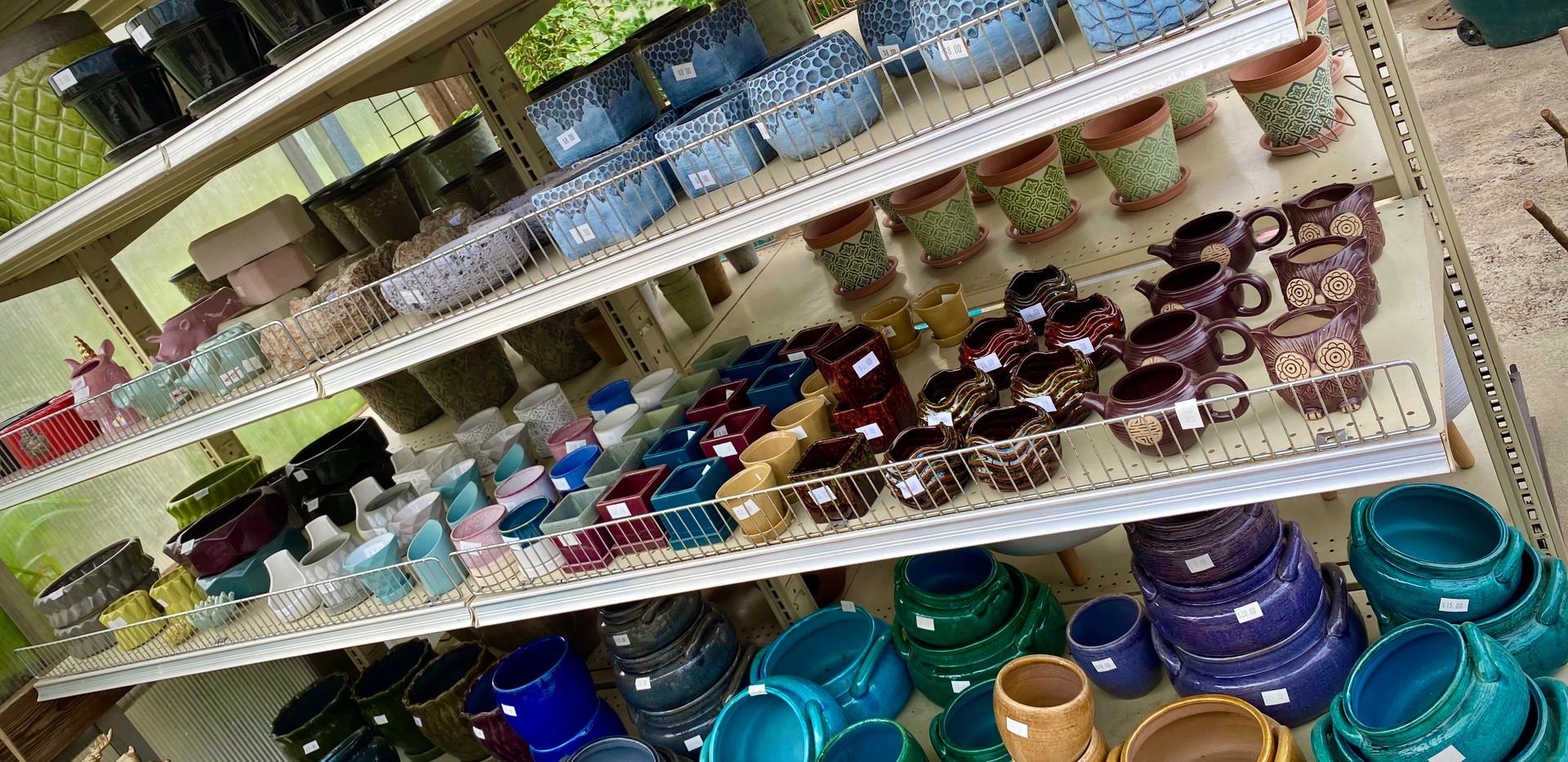 Wide range of indoor pottery