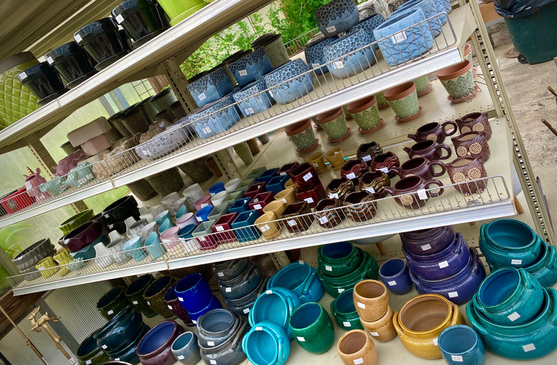 Wide range of indoor pottery