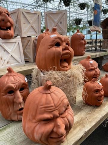 Demented Pumpkins