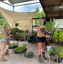 Soul and Soil Project is committed to farming for the future, food justice, and healing the earth to heal the soul and we're really excited about a large river bank restoration project they have planned!