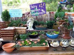Fairy Garden Assort.JPG