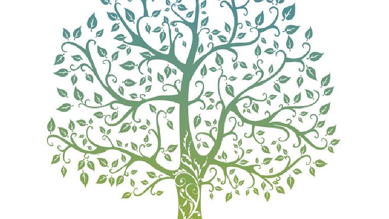 Elsecar Mind Body Spirit & Wellbeing Festival
