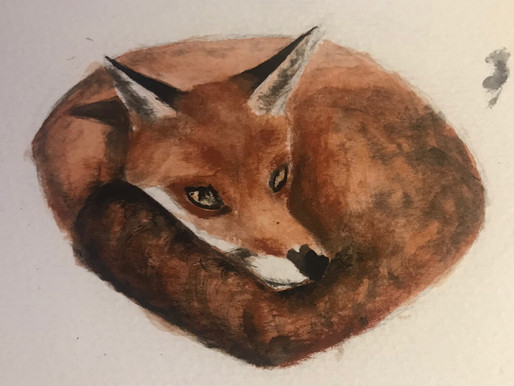 Welcome to our new blog, The Friendly Fox!