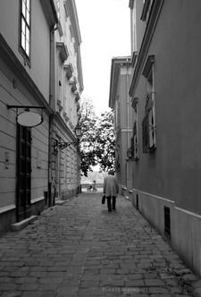 walkwayHungary.jpg