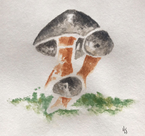 Mushroom Japanese Paper Masa