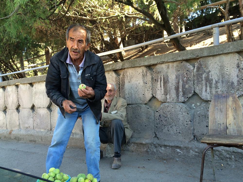 Armenia, figs, farmer