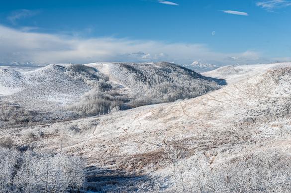 Glenbow Winter