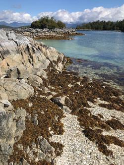 British Columbia Broken Islands