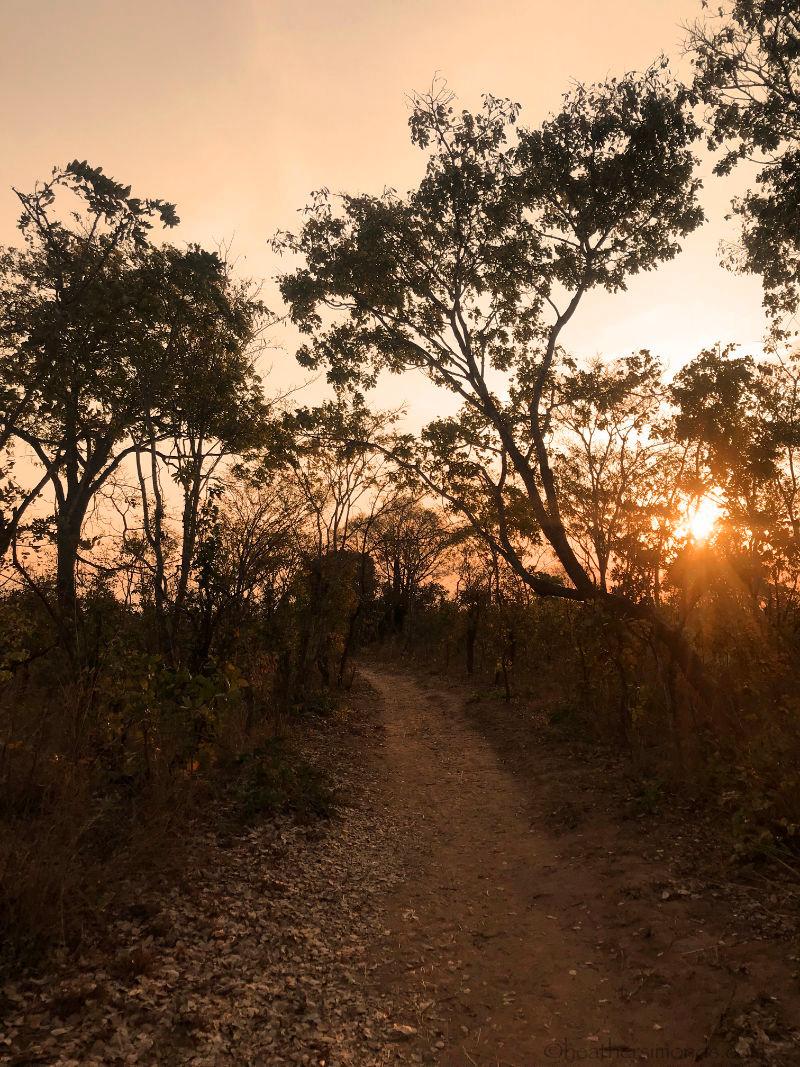 African, Lifupa, Malawi