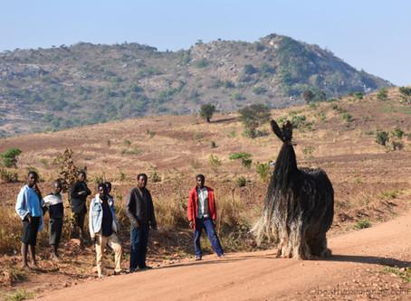 Gulu Wamkule and other Malawi Adventures