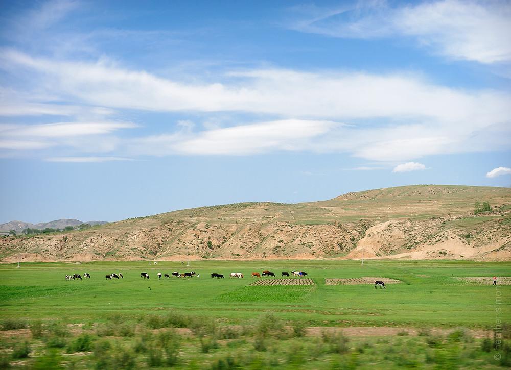 Mongolia, Trans Siberian train