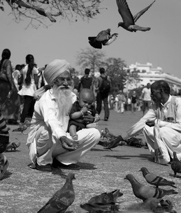 IndiaStreetPhotographyFeedingPigeonsBWhe